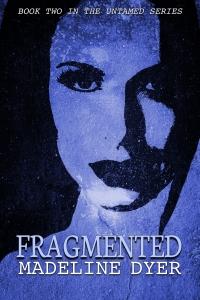 fragmented1400